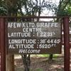 Welcome To Giraffe Center