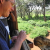 David Urmann Feeding Giraffe