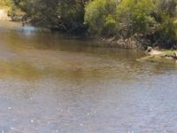 Dale River