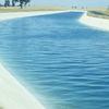 Delta Mendota Canal