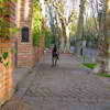 Vintage Stone Paths With Brick Walls
