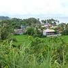 Down Town Bulusan
