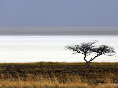 Etosha pan