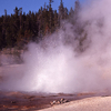 Echinus Geyser - Yellowstone - USA