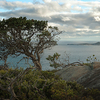 Eclipse Island