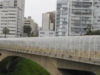 Puente Eduardo Villena Rey