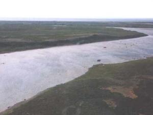 King Salmon River