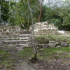 El Pilar Ruins - Cayo District - Belize
