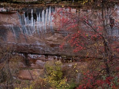 Emerald Pools Trail - Zion - Utah - USA