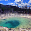Emerald Spring - Yellowstone - USA
