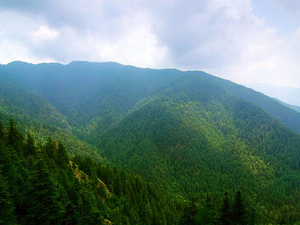 Himachal 10 Nights & 11 Days Trip Photos