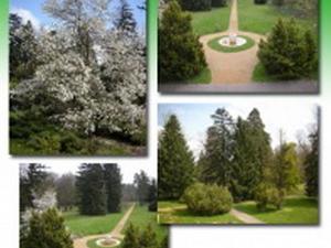 English Park and Botanical Garden