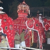 Esala Perahera At Kandy Temple Of The Tooth