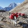 Everest Near Lobuche - Sagarmatha NP