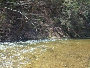 Evitts Creek