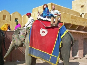 Private Tour: Amber Fort & Jal Mahal Including Elephant Ride Photos
