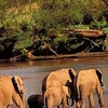 Selous Game Reserve