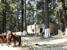 Ermita Soledad D F
