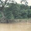 Apure River