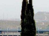 Estadio De Beisbol Monclova