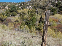Fenceline Trail