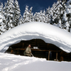 Fern Lake Patrol Cabin - Yellowstone - USA