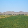 Fields In Chuy River Valley - Kyrgyzstan