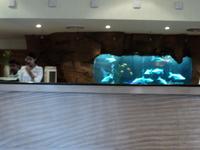 Zuri Hotels & Resorts