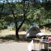 Six Rivers Fir Cove Campground