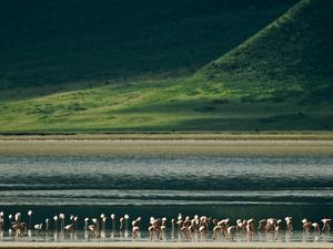 3 Day Manyara, Ngorongoro and Tarangire National Park Photos