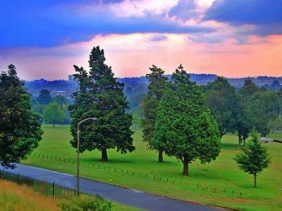Florida Park Johannesburg