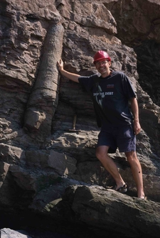 Fossil Sigillaria Tree