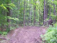 Frog Tanks Trail 112