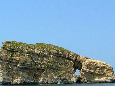 Fungus Rock