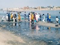 Río Senegal