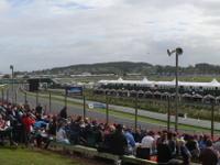 Pukekohe Park Raceway