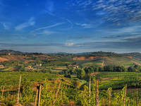 Wonderful Tuscany Wine Tour In Chianti