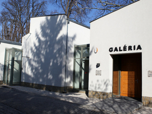 Gallery of Art Colony