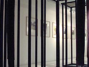 Gallery Saevar Karl