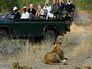Kruger Quickie Safari 3-Day Photos