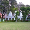 Gardens At Parmarth Niketan