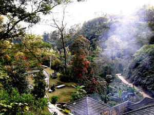 Gedong Songo Temple + Coffee Plantation Photos