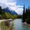 Weasel Collar Glacier Montana USA