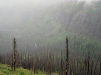 Buttercup Park Trail