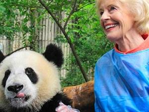 1 Day Dujiangyan Panda HoldingTour Photos