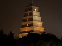 Wild Goose Pagodas
