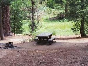 Gigantea Campground