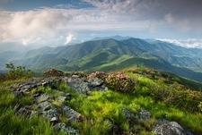 Grassy Ridge Spur Off Appalachian Trail - North Carolina