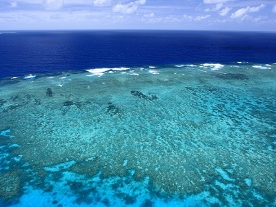 Great Barrier Reef In Australia