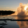 Great Fountain Geyser - Yellowstone - Wyoming - USA